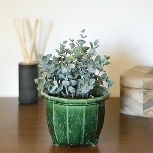 Vintage Green Watermelon Small Planter Imperial